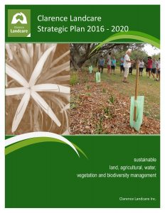 Cover of strategicplan2017